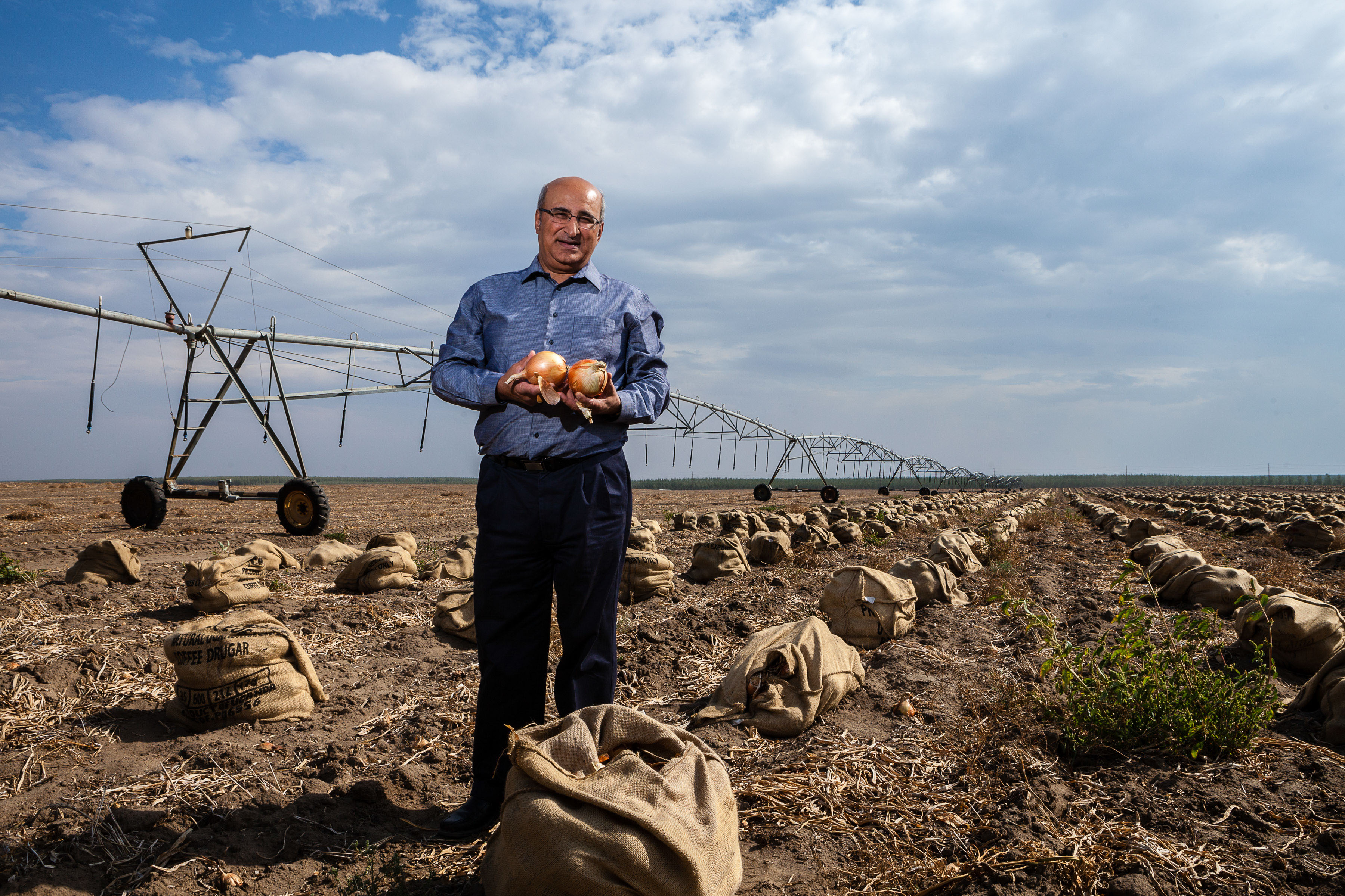 Businessman Posing with Onions in field with irrigation equipment