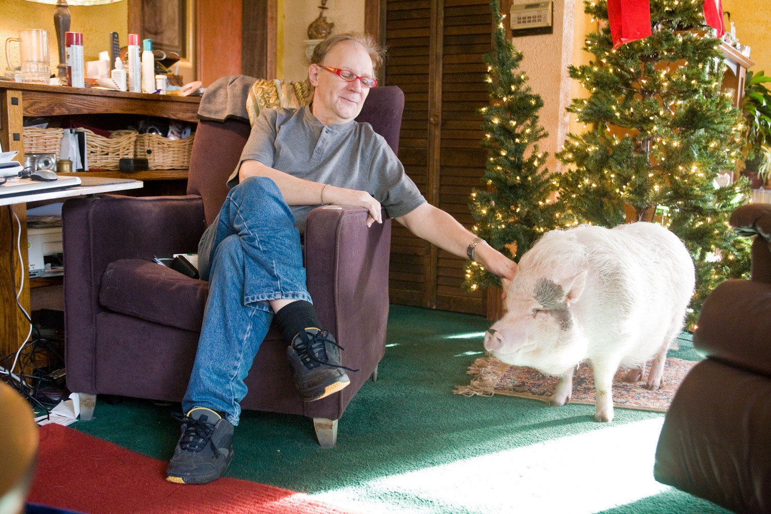 Martin Kasper and his pet pig Buddy Moon resting at home